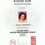 Feng Shui-Master-Practitioner-Diploma_Shasheta-Feng-Shui-consultation
