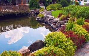 Water_Feng-Shui-Garden